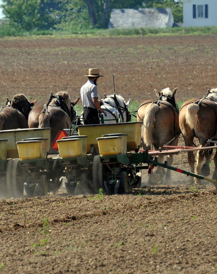 Fundusz Rozwoju Rolnictwa – kółka rolnicze pomoc dla indywidualnych gospodarstw